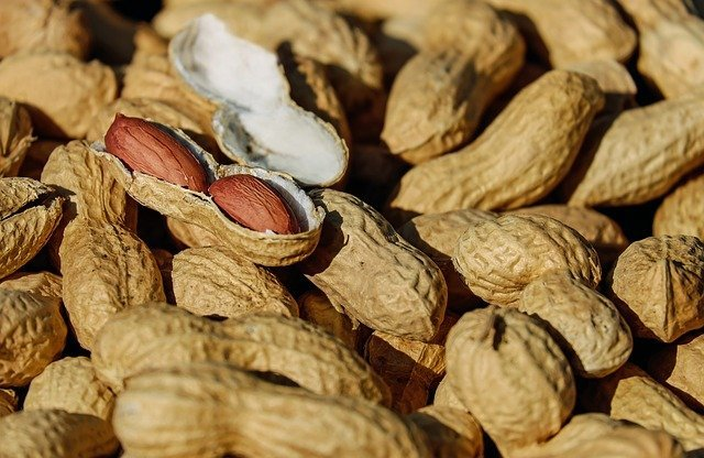 Many people have allergic reaction of peanut