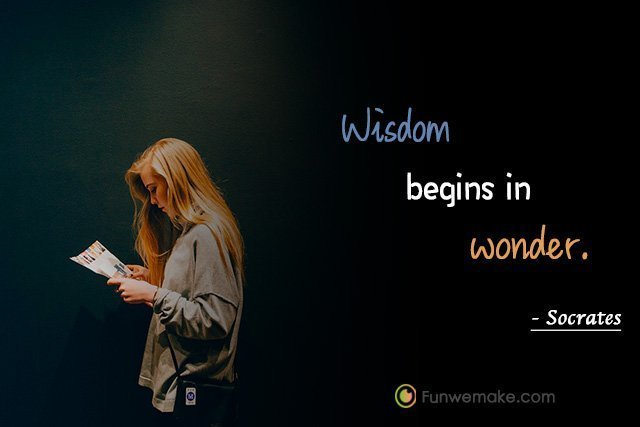 Socrates Quotes Wisdom begins in wonder.